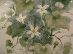 2011  8 中島清隆 野の花風景スケッチ展 022.jpg